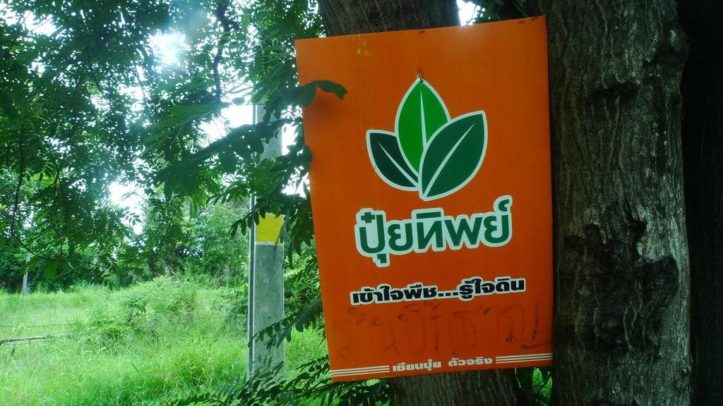 Aree Thai Massage Eskort Forum